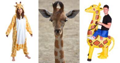 giraf kostume til voksne, giraf udklædning til voksne, giraf heldragt til voksne, giraf kostumer, giraf voksenkostumer, giraf dyrekostumer, festivalskostume, kostume til fastelavn, fastelavnskostume til mænd, fastelavnskostume til kvinder, fastelavnskostume til voksne