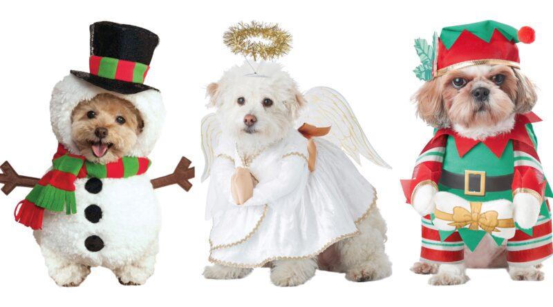 julekostume til hunde, jule kostumer til hunde, jule kostumer til kæledyr, jul hundekostume, kæledyr kostumer, hundekostumer, hundekostume tilbud, tøj til hunde, juletøj til hunde