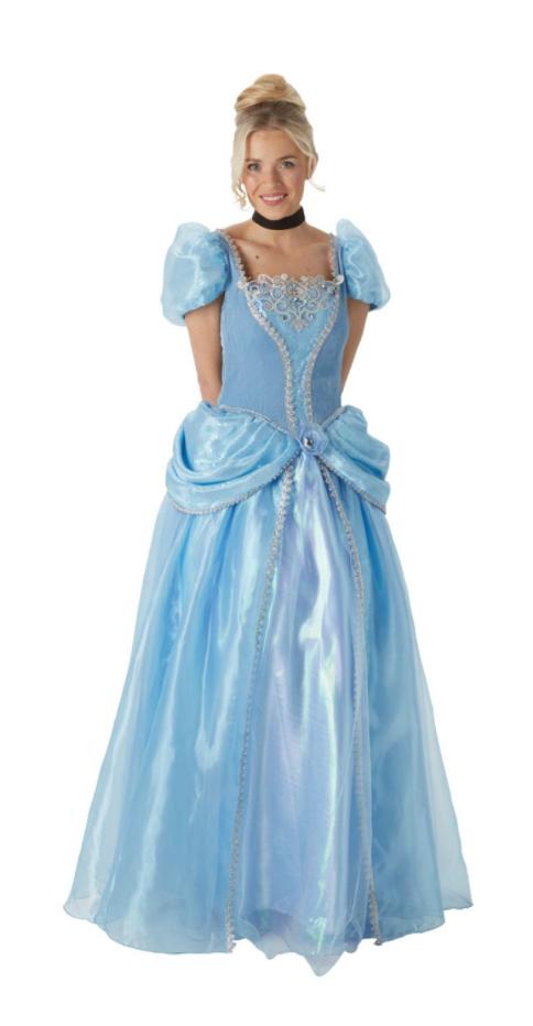 Askepot kjole til voksne - KostumeUniverset