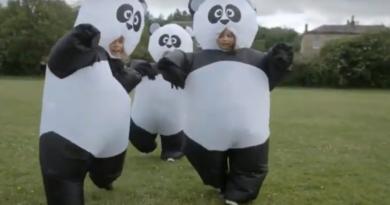 panda kostume til voksne pandakostume til kvinder panda udklædning voksnekostume sort kostume kostume dyrekostume truet dyreart kostume kinesisk kostume heldragt maskot