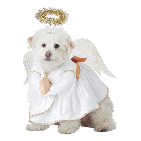 engel kostume til hund 450x450 - Julekostume til hunde