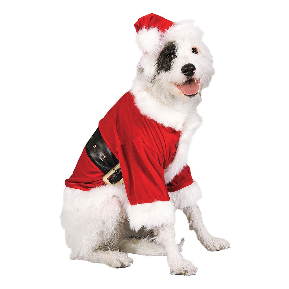 julemand hundekostume - Julekostume til hunde