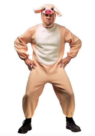 gris heldragt til voksne 313x450 - Gris kostume til voksne