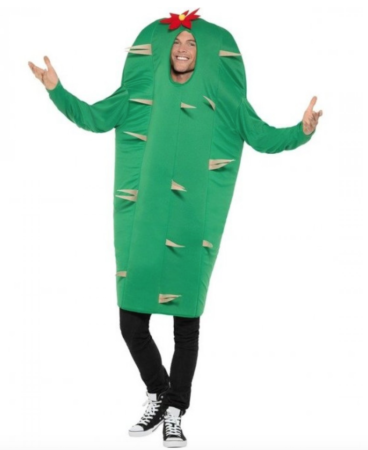 kaktus fastelavnskostume sjove kostume til voksne 368x450 - Sjove fastelavnskostumer til voksne