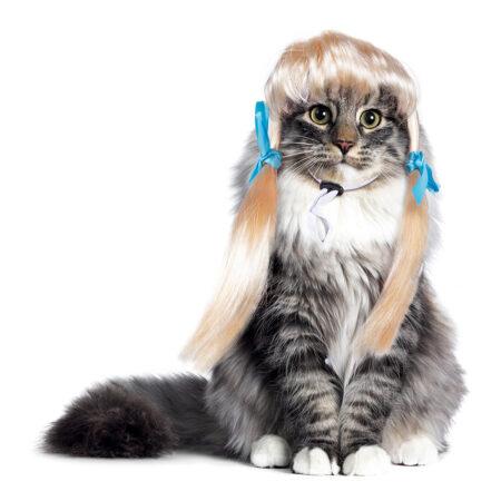 Blond katteparyk 450x450 - Udklædning til katte