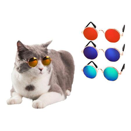 Briller til kat 450x450 - Udklædning til katte
