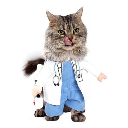 Doktor kostume til kat 450x450 - Udklædning til katte