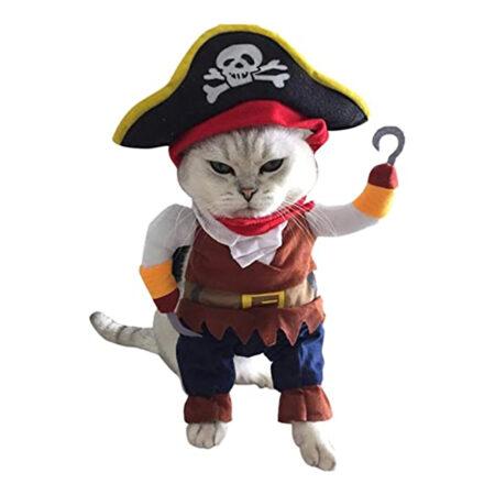 Pirat kostume til katte 450x450 - Udklædning til katte