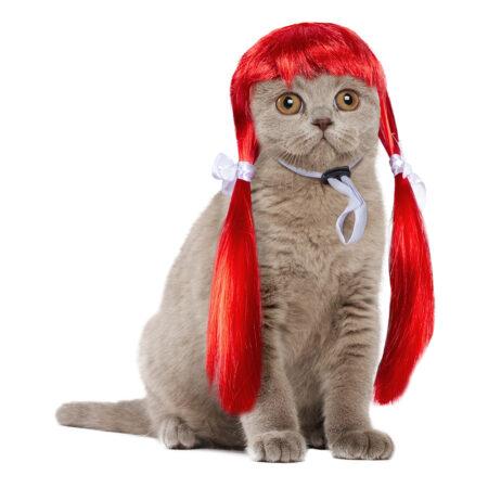 Rød katteparyk 450x450 - Udklædning til katte