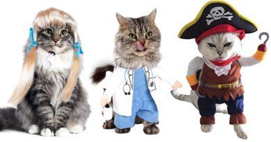 udklædning til katte, kostumer til katte, dragter til katte, katte-kostumer, tøj til katte, paryk til katte, briller til katte, kostumer til kæledyr, fastelavnskostumer til kat